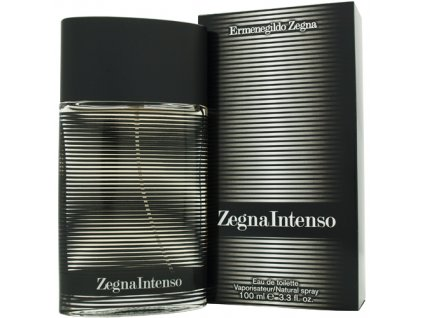 Ermenegildo Zegna Zegna Intenso - toaletní voda