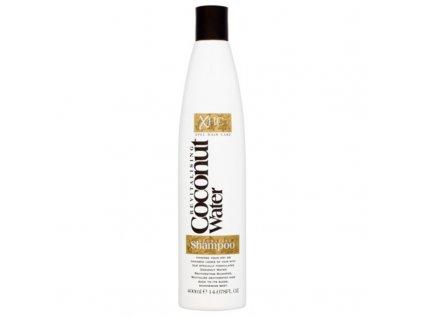 Alpecin Hydratační šampon Coconut Water - (Hydrating Shampoo)