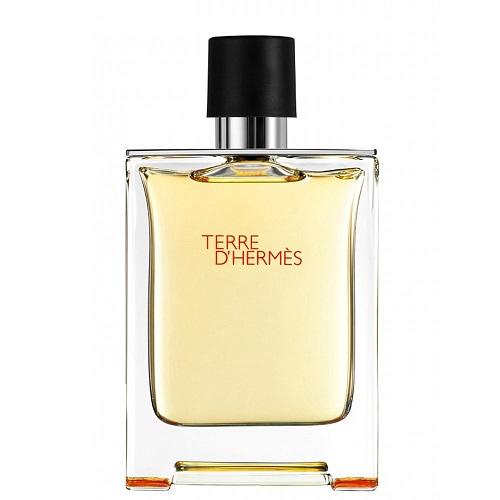 Hermes Terre D´Hermes - (TESTER) toaletní voda M Objem: 100 ml