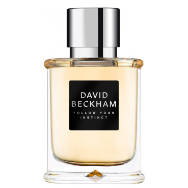 David Beckham Follow Your Instinct - toaletní voda M Objem: 50 ml