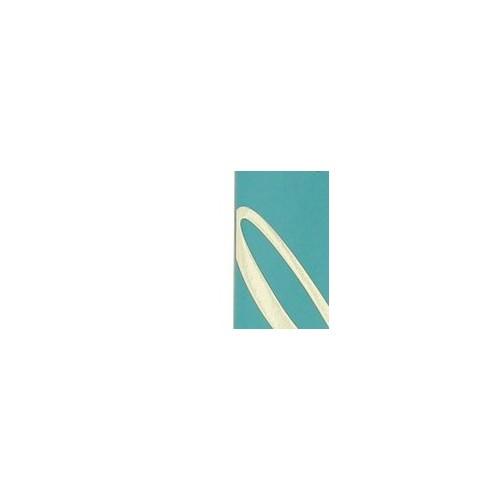 Giorgio Beverly Hills Hills Blue - toaletní voda Objem: 90 ml