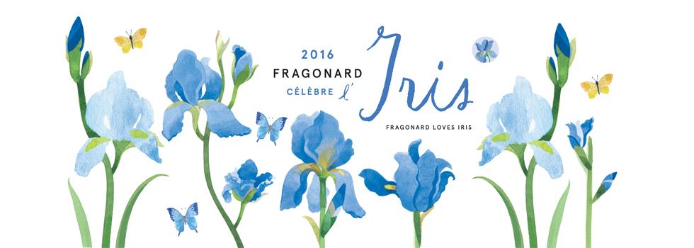 IRIS květia roku 2016