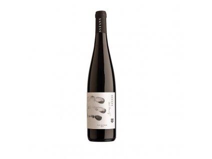 Syfany víno Zweigeltrebe