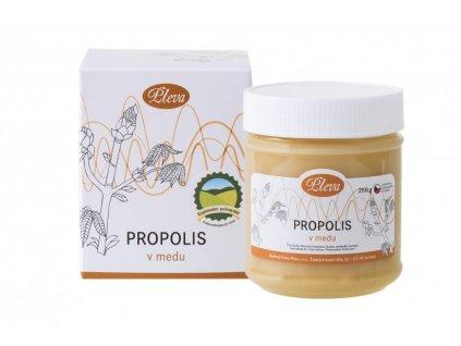 Propolis v medu Pleva
