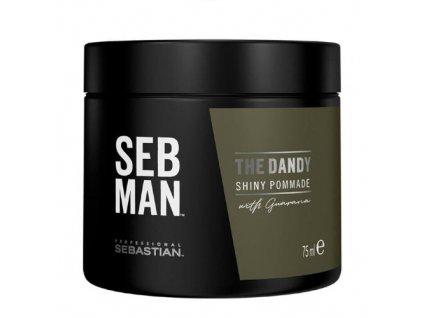 Pomáda na vlasy SEB MAN The Dandy (Shiny Pommade) 75 ml