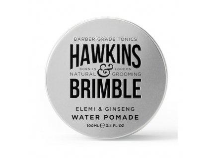 Pomáda na vlasy na vodní bázi s vůní elemi a ženšenu (Elemi & Ginseng Water Pomade) 100 ml