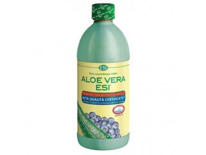 Aloe Vera šťava s borůvkami 1 l