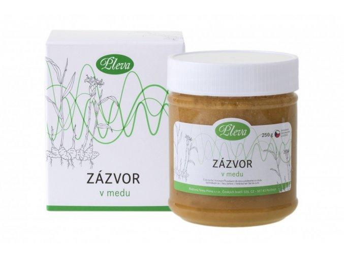Zázvor lékařský v medu Pleva