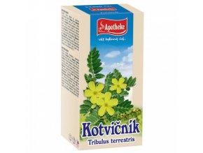 Apotheke Apotheke Kotvičník čaj 20x1,5g