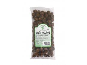 Zdraví z přírody s.r.o. Kukuřičné kuličky-čokoláda 70g