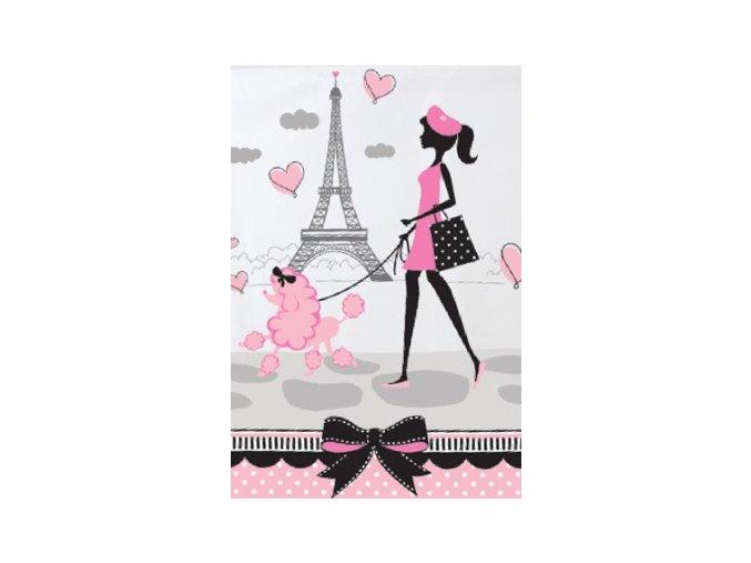 Obrus Paris party