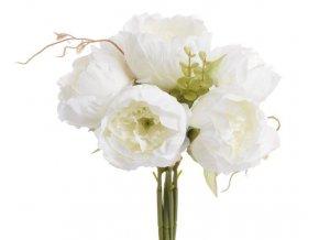 149CAN76 11271 Róża kapuściana x 6 30cm 120 12pcs 6 cream