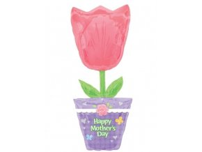 Fóliový balón Deň Matiek Supershape