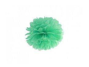 Pompon zelený 25cm