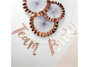 Team Bride Rose Gold Paper Bunting HENPBUNT v1