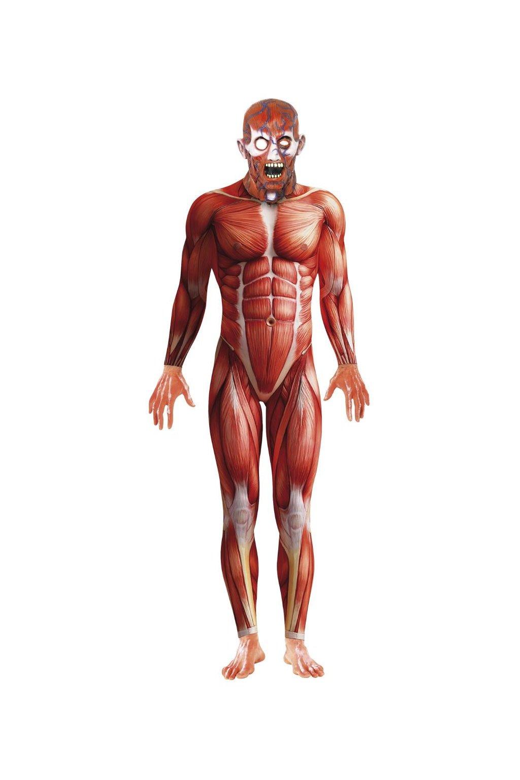 Anatomy morphsuite -  druhá kůže