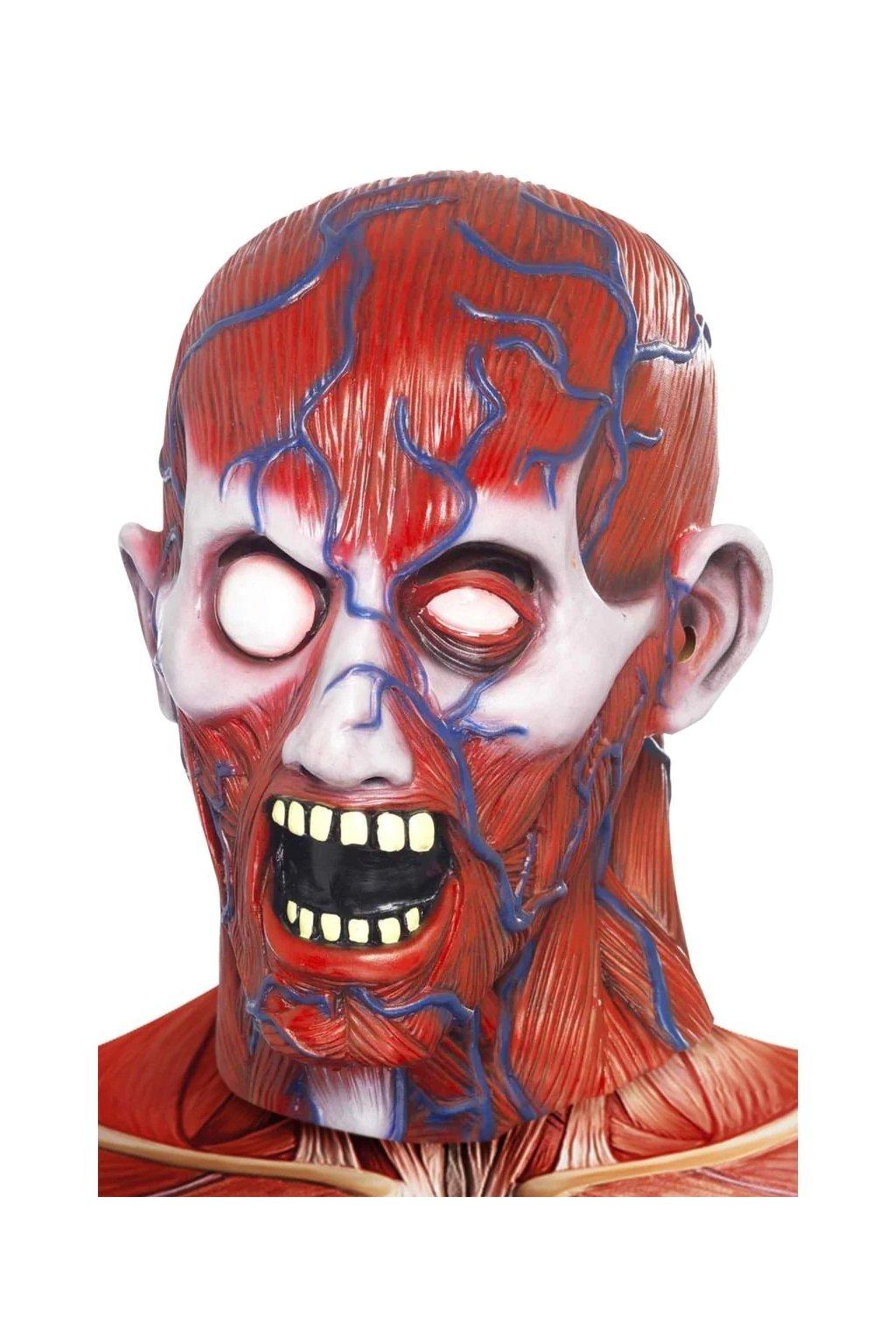 Maska bez kůže Anatomy