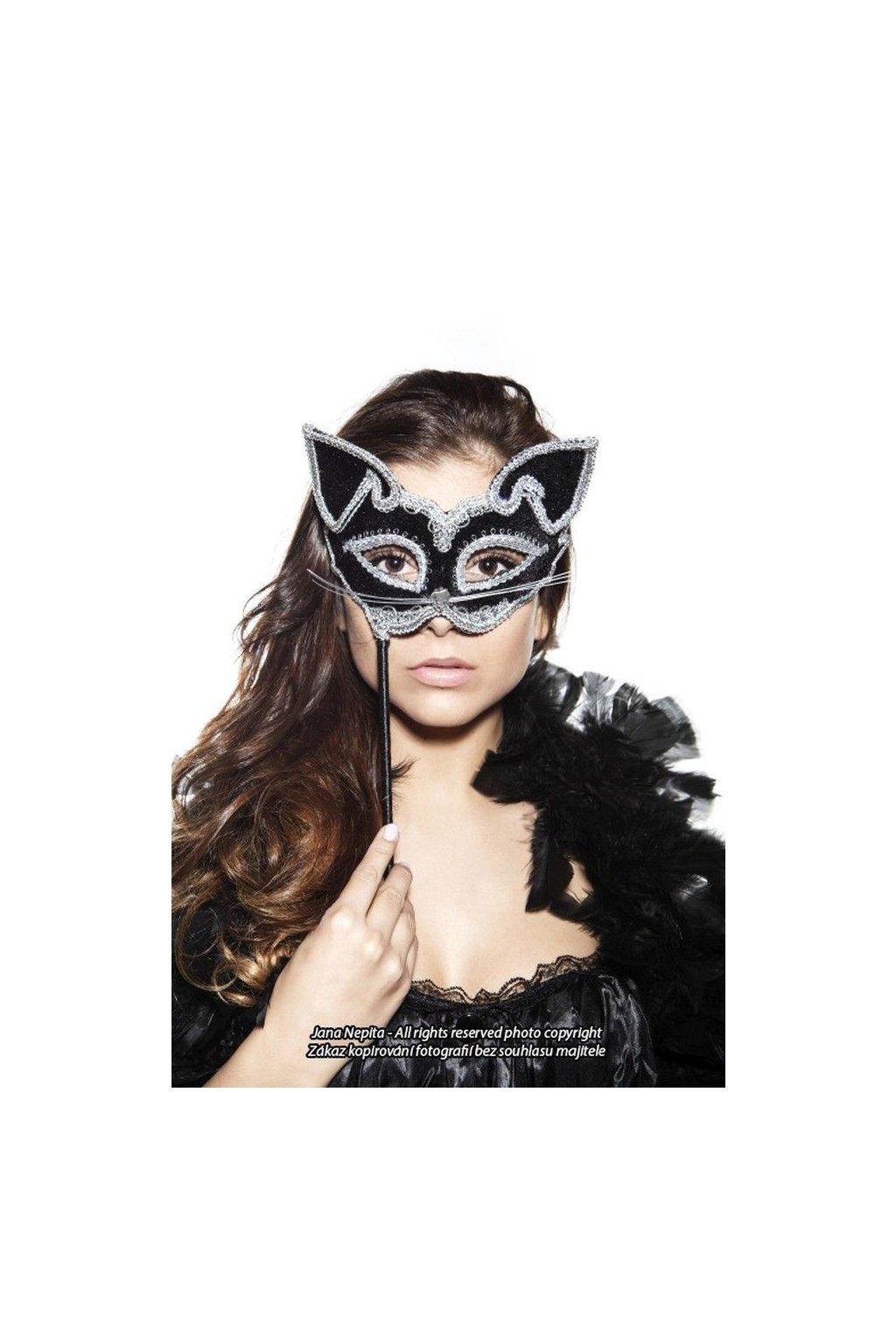 Maska kočky na tyčce