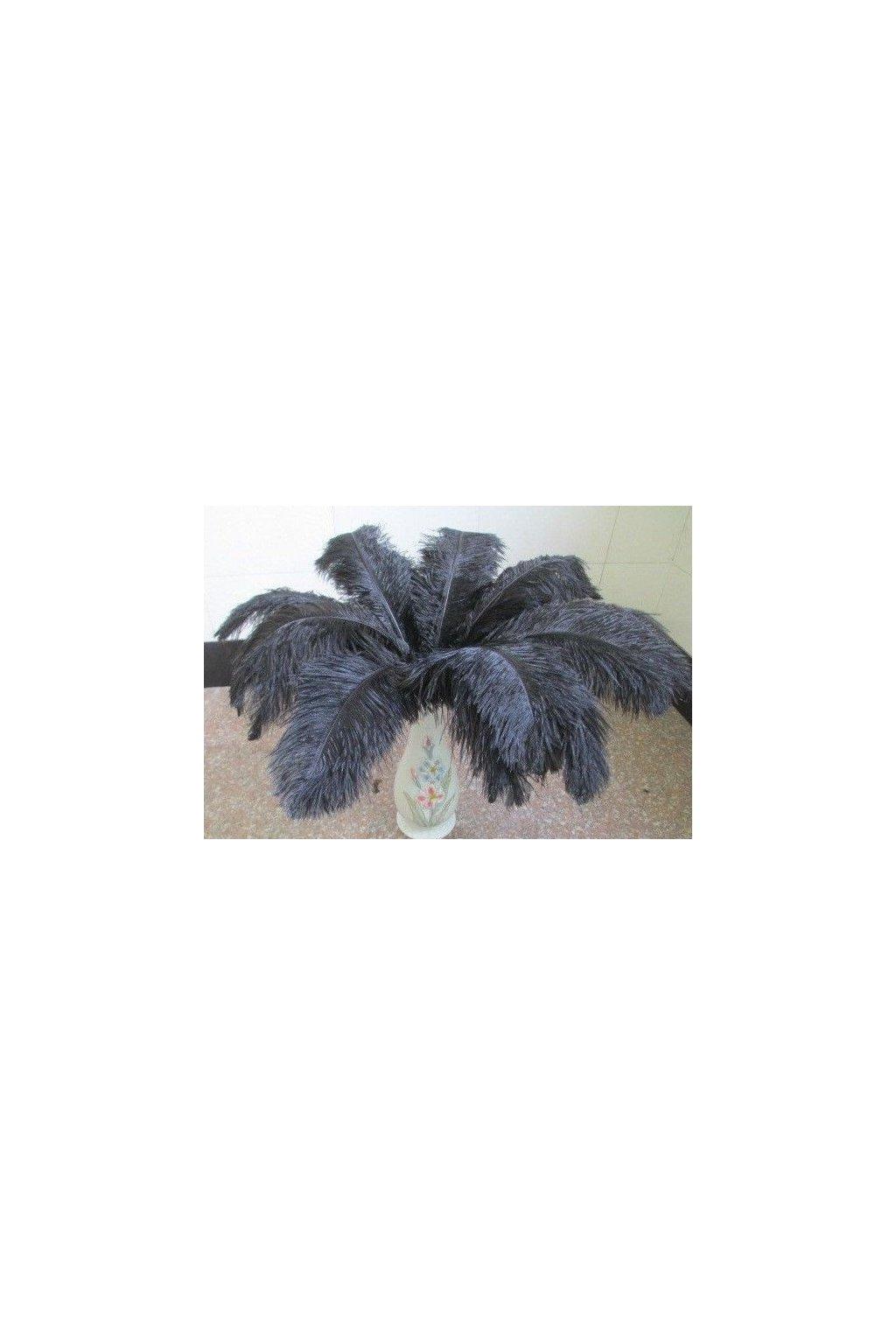Velké pštrosí peří 55-60cm - černé