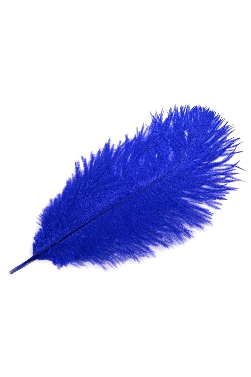 Pštrosí peří 25 cm - modré