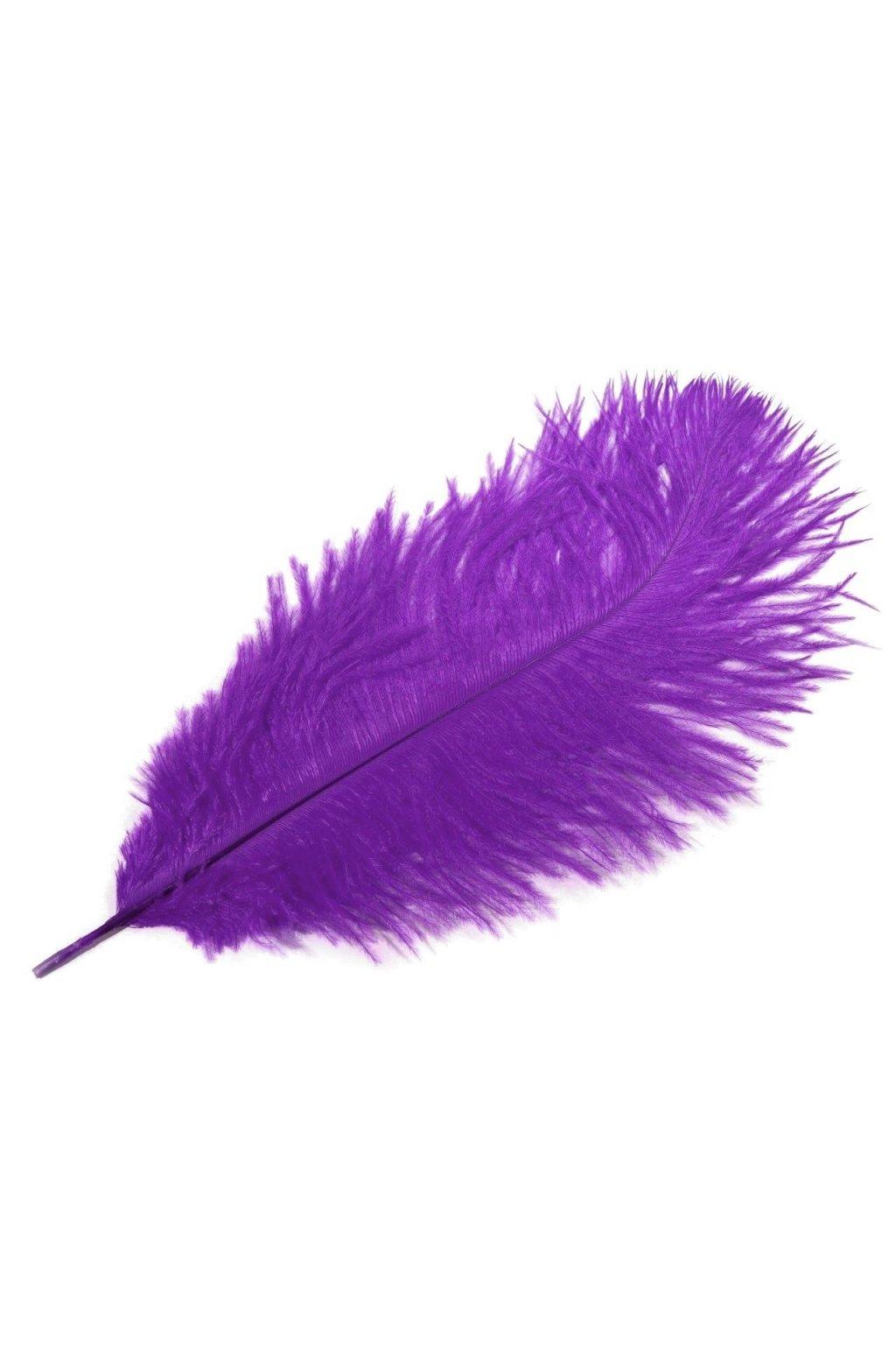 Pštrosí peří 25 cm - fialové