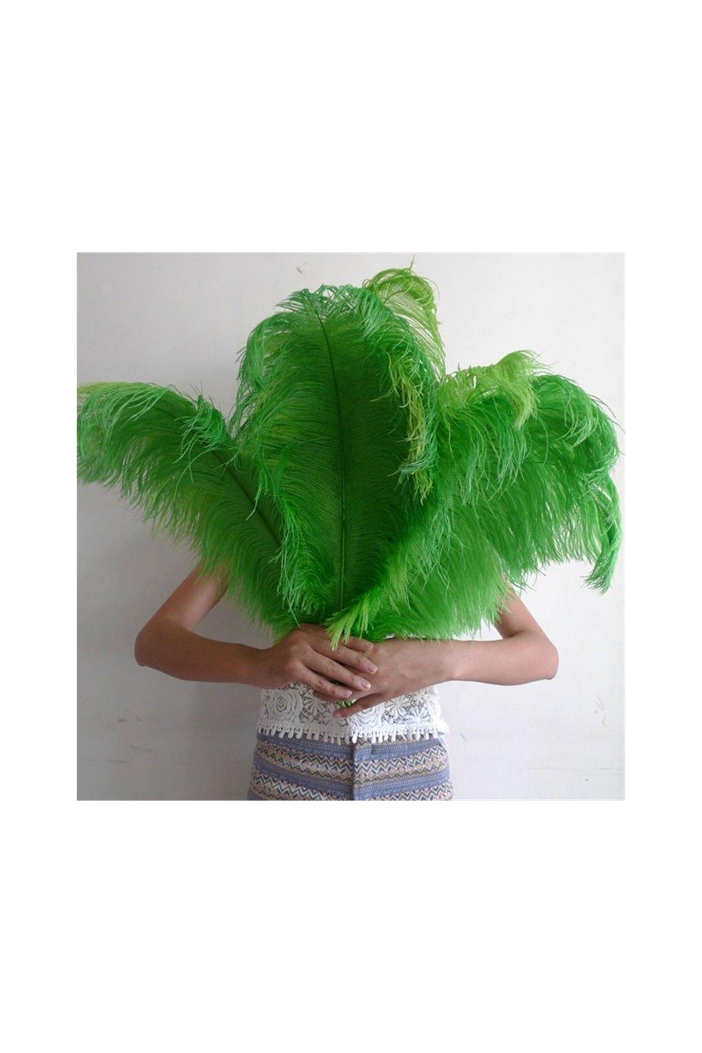 Zelené pštrosí peří - brko 55-60cm