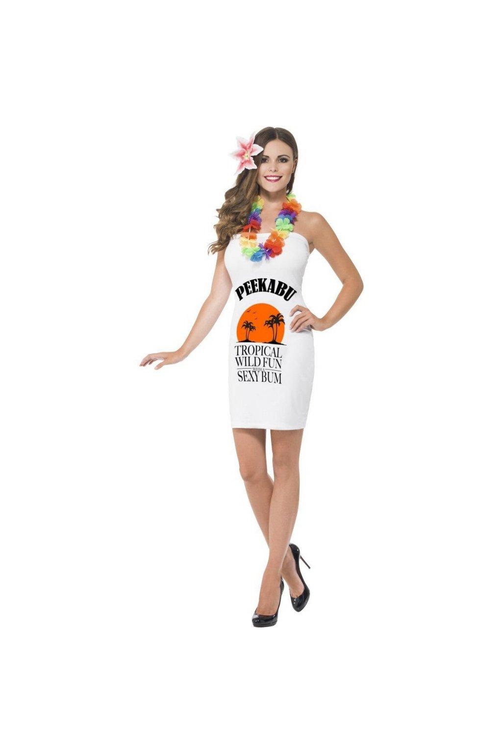 Kostým - láhev Malibu