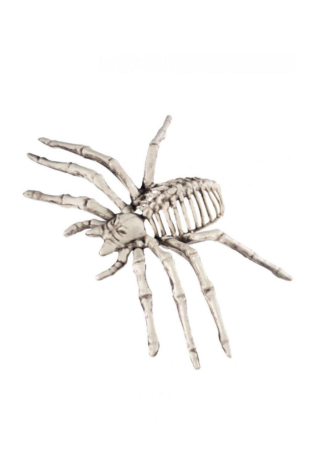 Pavouk kostra - dekorace Halloween