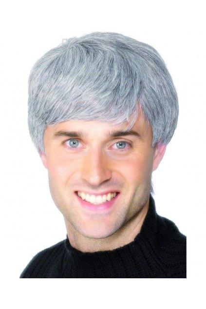 Šedá paruka - Corporate Wig