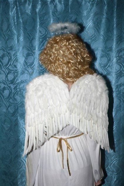 Andělská křídla péřová - 50cm