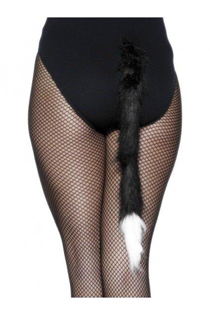 Kočičí ocas