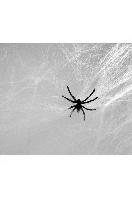 Pavučina bílá s pavoukem