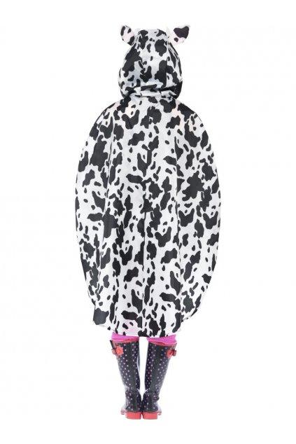 Pláštěnka kráva
