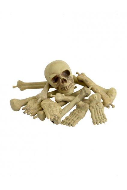 Sada kostí s lebkou