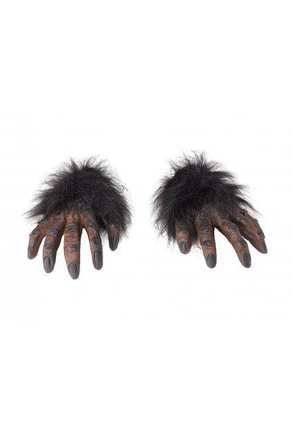 Opičí ruce chlupaté