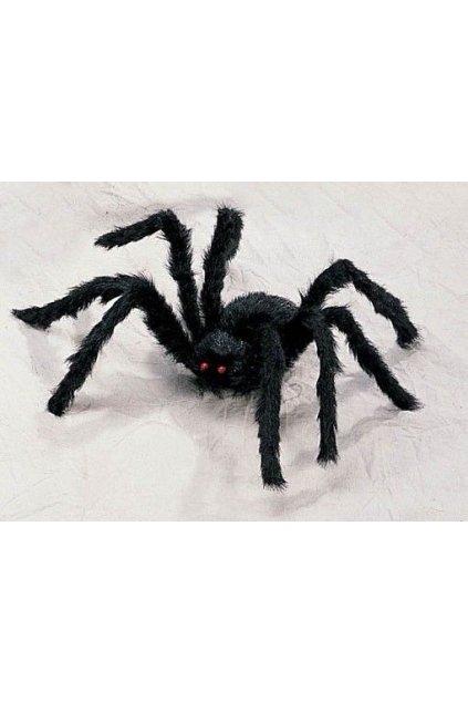 Pavouk černý 60 cm