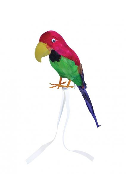 Papoušek pro piráty