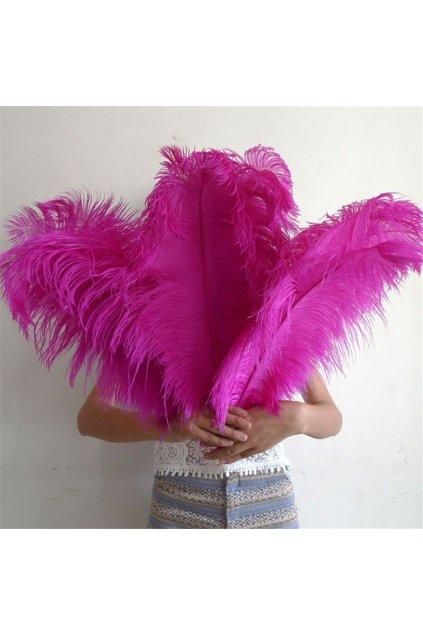 Růžové pštrosí peří - brko 55-60cm
