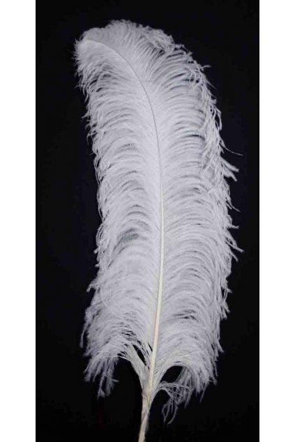 Bílé pštrosí peří - brko 55-60cm