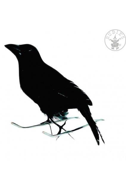 Vrána černá 15cm - dekorace