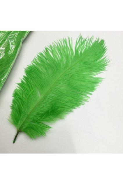 Pštrosí peří 25 cm - zelené