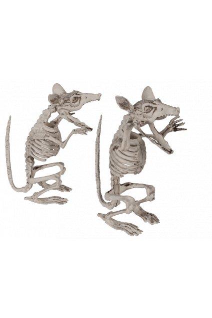 Kostra krysy
