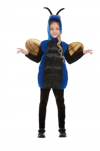 Brouček - dětský kostým brouk