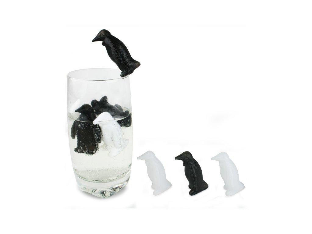 Tučniak nápojový chladič