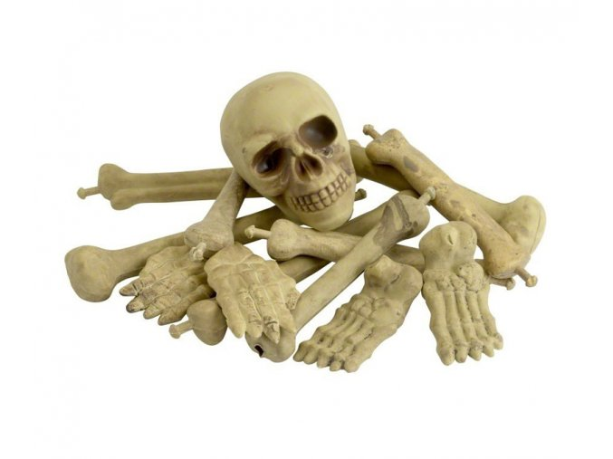 Dekorace Lebka a kosti