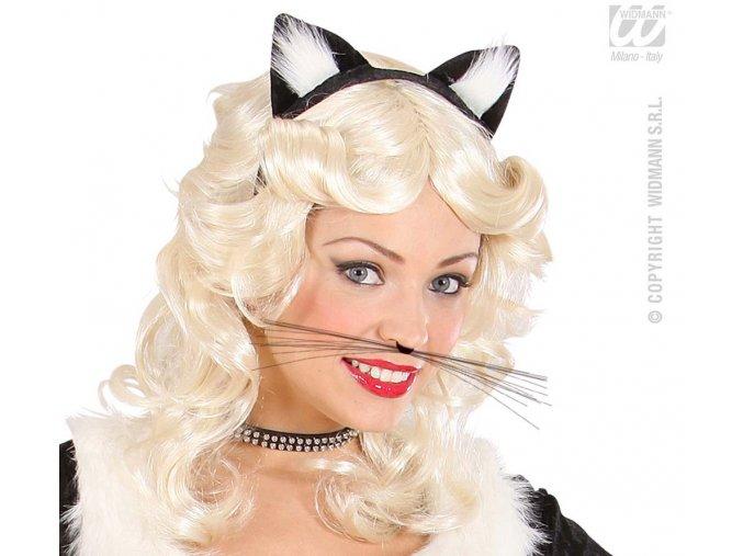 Kočičí vousy