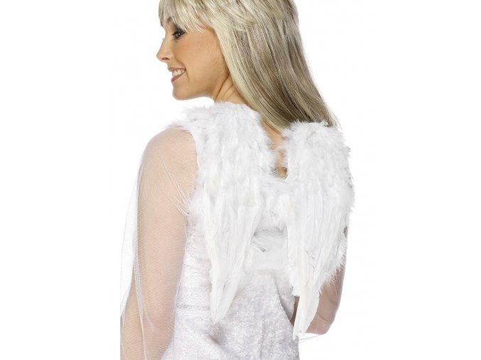 Andělská křídla malá 30x40cm