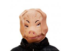 Plastová maska prase