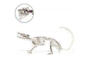 Dekorace Kostra krysy