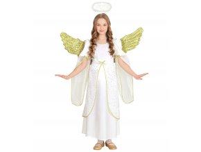 Dětský kostým anděl (sametový)